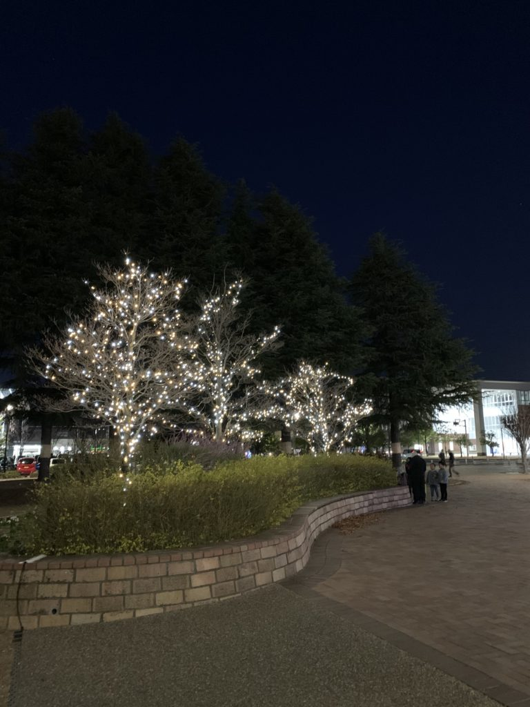 ガーデン・イルミネーションIN西大寺2019